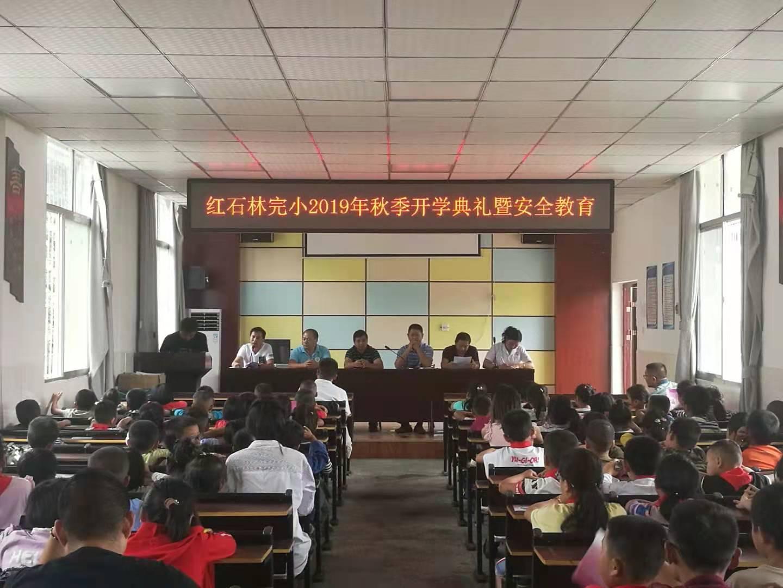 红石林镇开展安全教育进校园活动